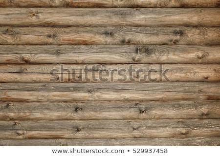 Fenyő nyaláb textúra viharvert több kettő Stock fotó © taviphoto