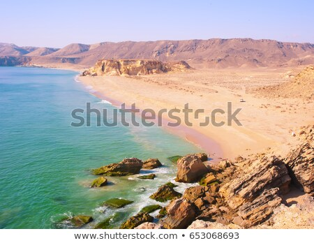 Beautiful coast of the Indian Ocean Stock photo © alinamd