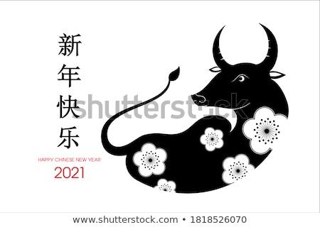 Kínai piros papír lámpás fehér minta Stock fotó © dezign56