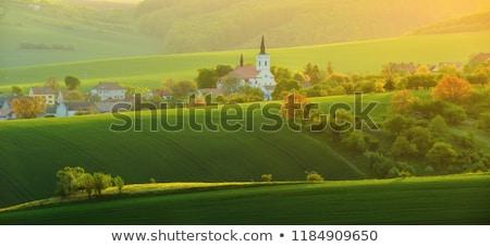 Cseh vidék égbolt fa fű épület Stock fotó © slunicko