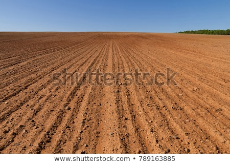 Agrícola campo tierra suelo primavera listo Foto stock © stevanovicigor