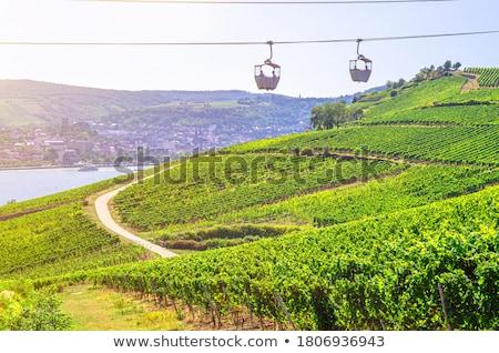 Kablo araba görmek nehir ön plan su Stok fotoğraf © smartin69