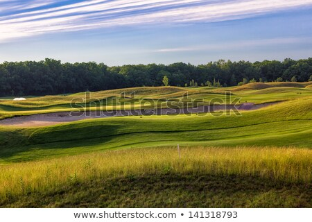 Stok fotoğraf: Perfect Wavy Green Ground On A Golf Course