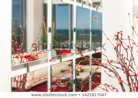 装飾的な · ミラー · 画像 · 赤 · リビングルーム - ストックフォト © jrstock