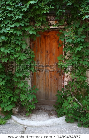 Very old Wooden Background Stock photo © sharpner