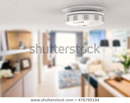 Füst detektor plafon fehér védelem riasztó Stock fotó © DragonEye