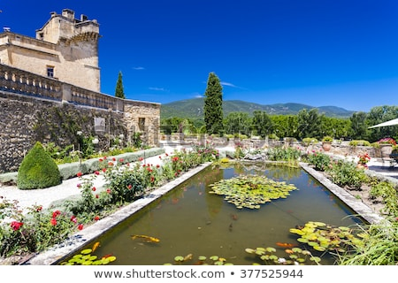 garden and palace in lourmarin provence france stock photo © phbcz