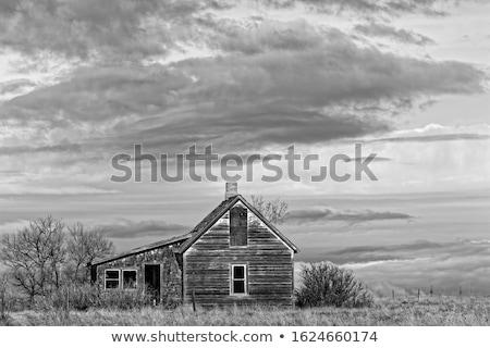 Stock fotó: öreg · préri · elhagyatott · park · ház · fa