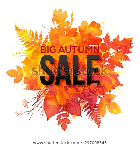 orange vector watercolor fall sale label stock photo © orson