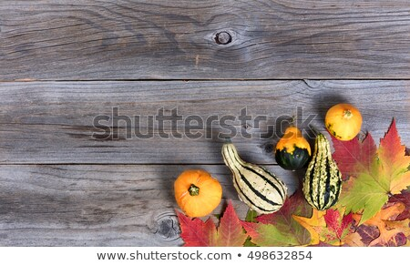 Real autumn gourd decorations and leaves on rustic wooden boards Stock photo © tab62