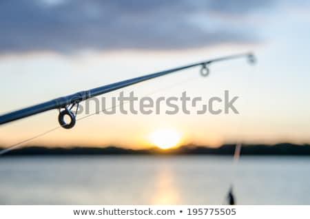 рыбалки озеро закат воды солнце спорт Сток-фото © alex_grichenko
