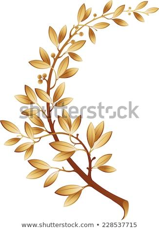 Kép arany babér ág levél felirat Stock fotó © fresh_5265954
