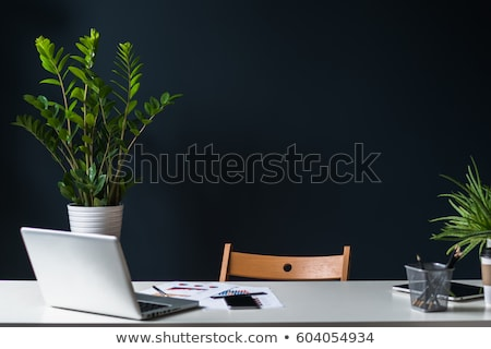 Graphic tablet and pencil on office desk Stock photo © stevanovicigor
