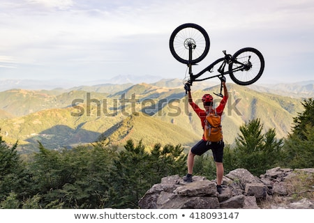 Mountain biker looking at inspiring forest landscape stock photo © blasbike