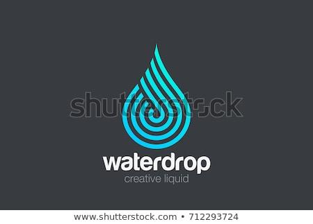 Gota de água logotipo modelo projeto natureza folha Foto stock © Ggs