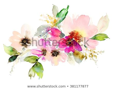 Zemin çiçek yaprakları pembe Stok fotoğraf © FAphoto