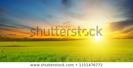 Stock photo: beautiful sun rise and cloudy sky.Wide photo .