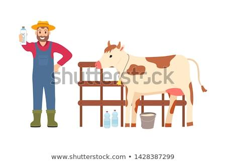 Mann Landwirt zeigen Kuh Illustration Cowboy-Hut Stock foto © lenm