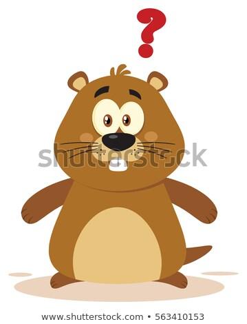 Cute Marmot Cartoon Mascot Character With Question Mark Stock photo © hittoon