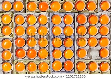 Stockfoto: Eieren · uniek · een · ei · voedsel