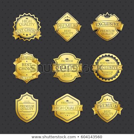 Prémium minőség legjobb választás arany logotípus sablon Stock fotó © robuart