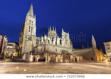 Burgos Cathedral on Plaza de San Fernando Stock photo © benkrut