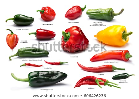 Set of Poblano peppers, paths Stock photo © maxsol7
