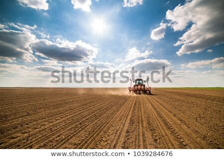 Arable field on the farm Stock photo © boggy