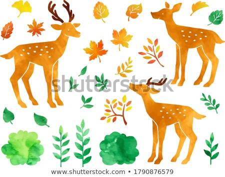 A group of Chic autumn leaves set Stock photo © Blue_daemon