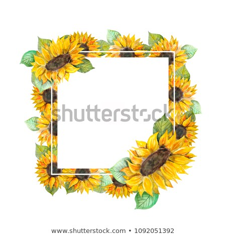 a sunflower border template stock photo © bluering