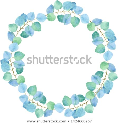 Lush luxury wreath of eucalyptus. Blue, turquoise tender leaves Stock photo © Natalia_1947