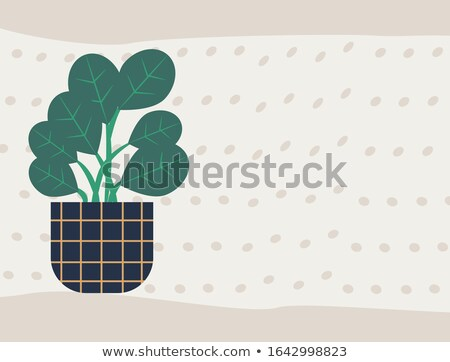 Rubber Plant Poster with Text Houseplant in Pot Stock photo © robuart