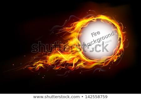Camino fuoco fiamma riscaldamento vettore Foto d'archivio © pikepicture