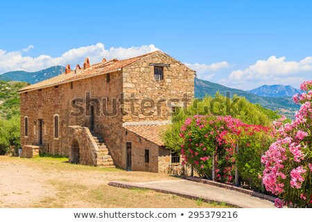 Southern coast of Corsica, France Stock photo © nito