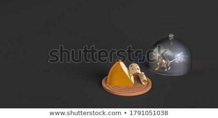 Ratto legno banner bianco isolato 3D Foto d'archivio © ISerg