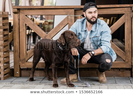 young owner of purebred brown labrador squatting by wooden wickets stock photo © pressmaster