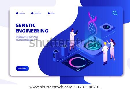 Genetikai mérnöki leszállás oldal mikroszkóp tudósok Stock fotó © RAStudio