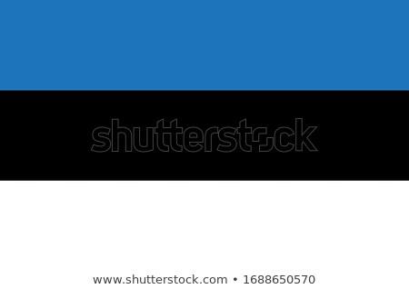 Észtország zászló fehér háttér keret felirat Stock fotó © butenkow