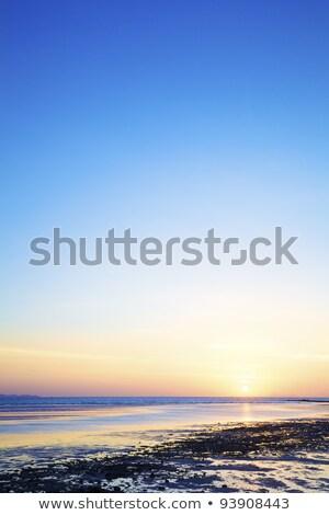 Napfelkelte tengerpart alacsony árapály függőleges lövés Stock fotó © moses