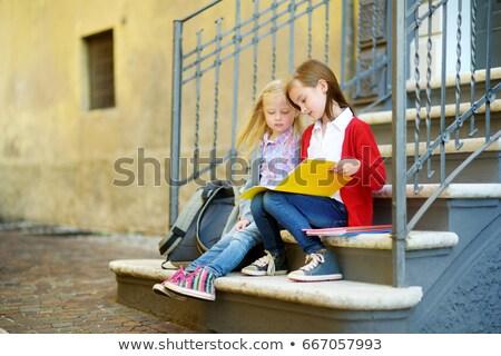 çalışma · dizüstü · bilgisayar · kız · arkadaş · okuma · bilgisayar - stok fotoğraf © photography33