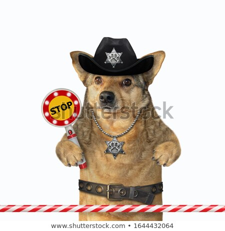 Traffic guard holding a no entry sign Stock photo © photography33