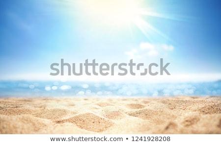 Altın plaj renk güneş gökyüzü Stok fotoğraf © jacojvr
