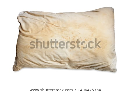 dirty mattress in abandoned house Stock photo © sirylok