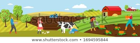 фермер · рабочих · полях · Открытый · сельского · хозяйства · портрет - Сток-фото © ivonnewierink
