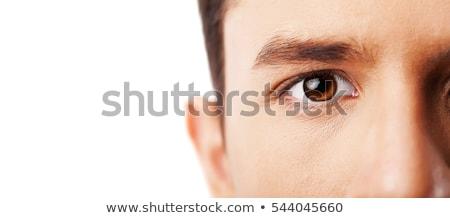 коричневый · Iris · подробный · человека - Сток-фото © stevanovicigor
