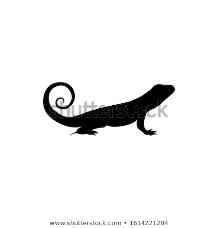 silhouette of iguana stock photo © perysty