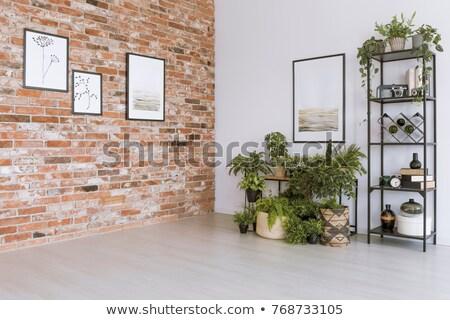 Sarok szoba üres modern lakás copy space Stock fotó © klikk