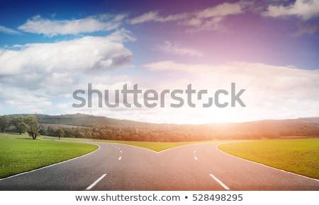 tenedor · carretera · horizonte · hierba · azul · cielo - foto stock © timwege