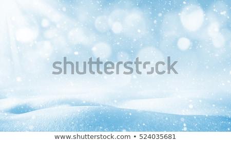 Kış parlak manzara kar Kayak yol Stok fotoğraf © michey