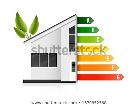 Housing energy efficiency rating certification system Stock photo © 4designersart